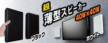 壁掛フラットスピーカー超薄型【Wall Speaker】ホワイト