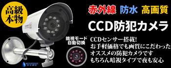 高級本物CCD防犯カメラ