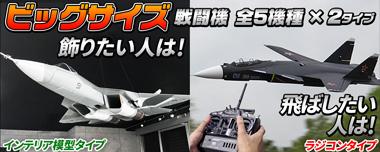 ビッグスケール戦闘機T-50,F-16,F-22,F-117ステルスなどの巨大模型モデルとRCラジコン飛行機タイプ