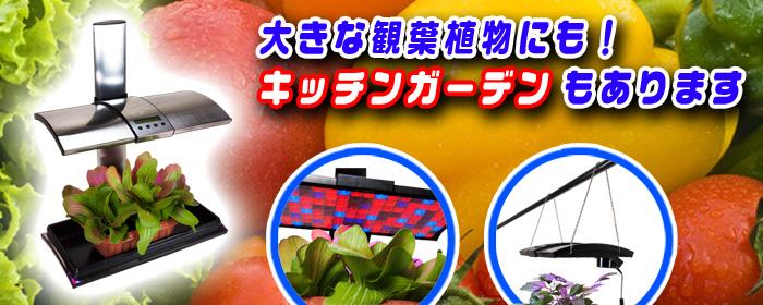 大型の観葉植物や野菜も栽培可能な【キッチンガーデン】も販売中